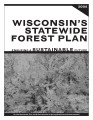 Wisconsin's statewide forest plan : ensuring a sustainable future, 2004